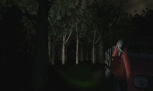 A picture of Slender: The Eight Pages