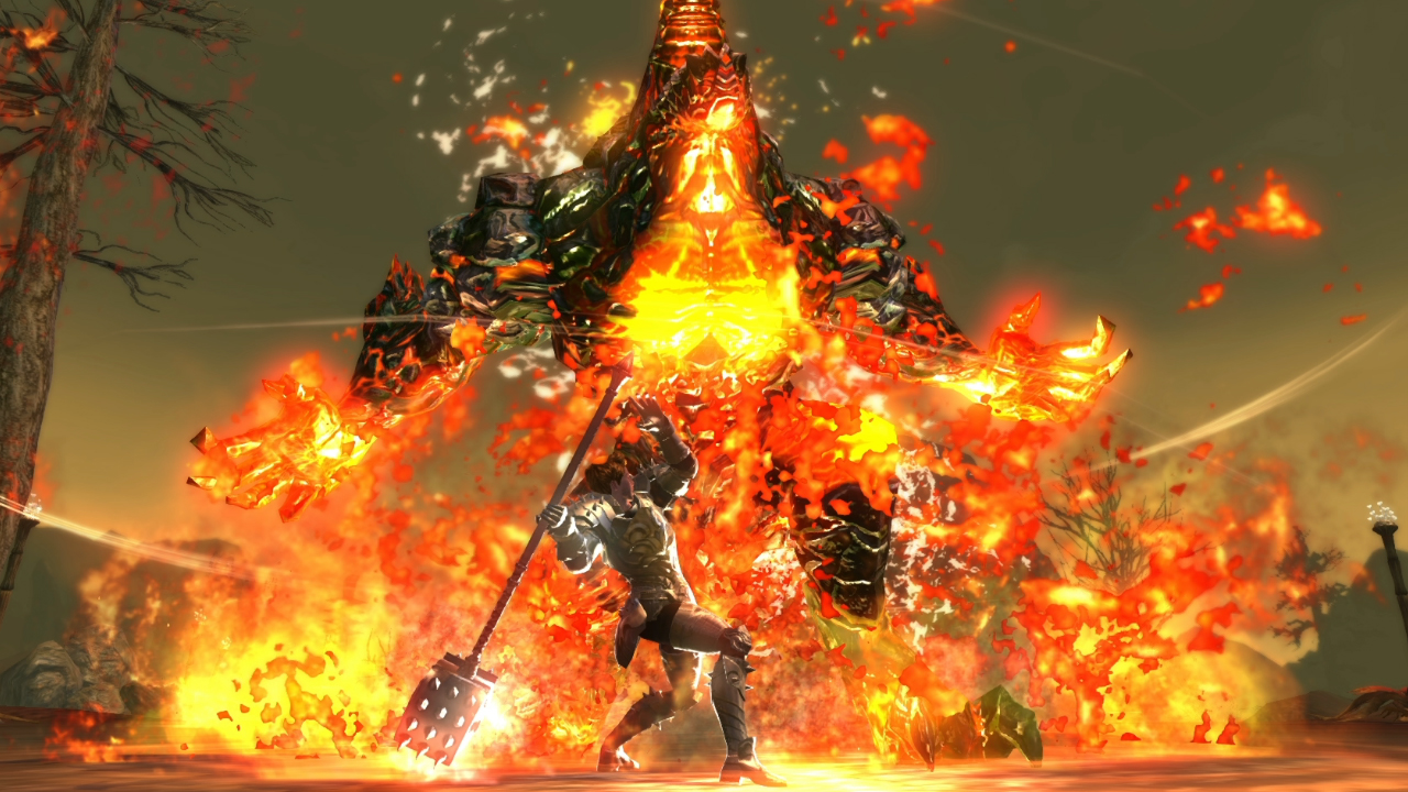 A picture of RaiderZ