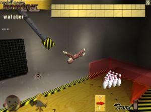 A picture of Ragdoll Monkey Bowling